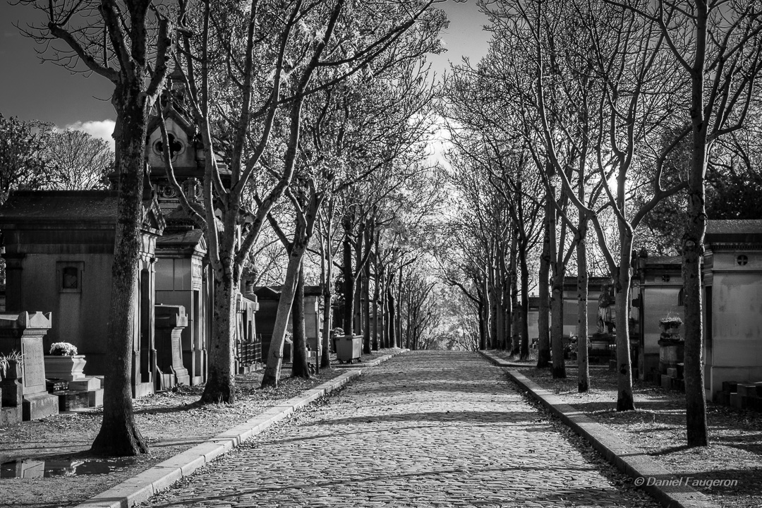 Roman-photo : Automne parisien - Impressions